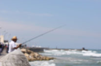 Fisherman, Roncha  רונצ'ה